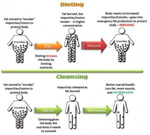 dieting-vs-cleansing1-500x450